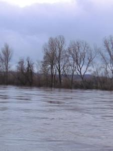 La Garonne se montre un petit peu!