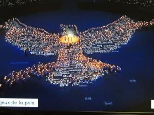Les exécutants tout en bougeant pour former finalement le dessin de la colombe de la paix