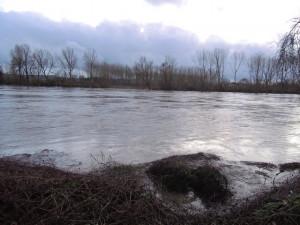 Garonne d'une rive à l'autre (de St Hilaire à Sérignac )
